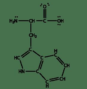 L-tryptophan-lewis1