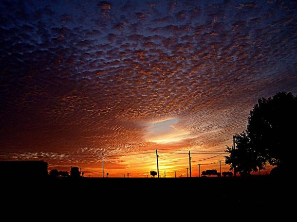 morningshot